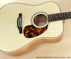 Boucher Guitars Studio Escrioto Goose