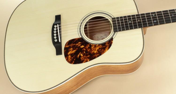 Boucher-Guitars-Studio-Escrito-Goose-top