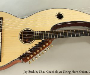 SOLD!!! 2015 Jay Buckley SE21 Cocobolo 21 String Harp Guitar