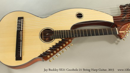 Jay-Buckley-SE21-Cocobolo-21-String-Harp-Guitar-2015-Full-Front-View