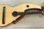SOLD!!! 2015 Jay Buckley SE21 Cocobolo 21 String Harp Guitar