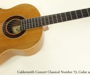 Caldersmith Concert Classical Number 73, Red Cedar and Walnut, 2009