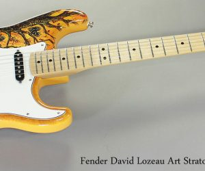 Fender David Lozeau Art Stratocaster Special Edition (SOLD)