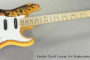Fender David Lozeau Art Stratocaster Special Edition (SOLD)