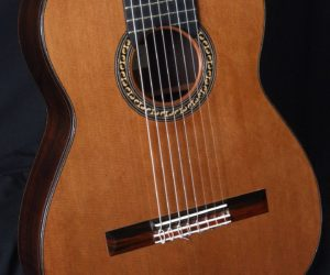 De Jonge 8 String Nylon 1985 (Consignment) SOLD