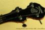 Deering Boston 19-Fret Tenor Banjo 1999  SOLD