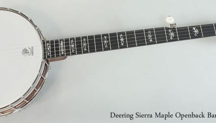 Deering-Sierra-Maple-Openback-Banjo-Full-Front-View