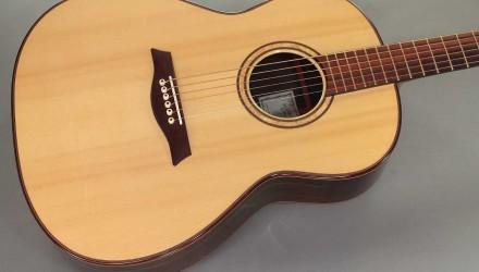 Sergei-de-Jonge-Brazilian-Steel-String-2006-top