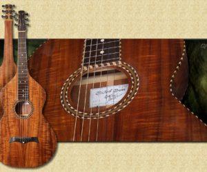 Michael Dunn Weissenbourn Hawaiian Guitars *No Longer Available*