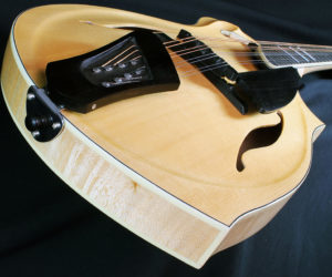 NO LONGER AVAILABLE!!! Eastman / Giacomel DG 1 Dawg Mandolin