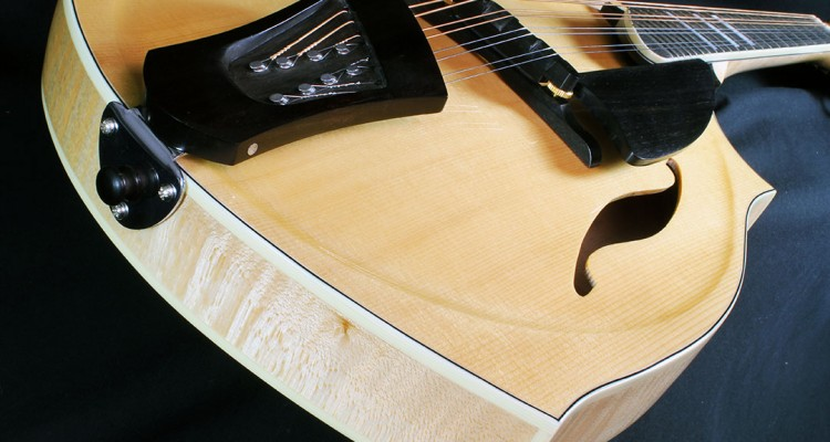 eastman_dawg_tailpiece_detail_2