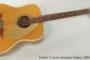 1964 Fender Concert Acoustic Guitar (SOLD)