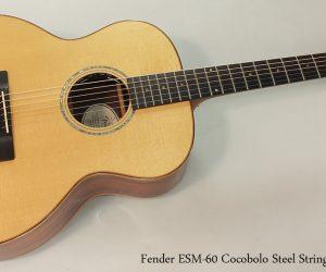 2006 Fender ESM-60 Cocobolo Steel String (SOLD)
