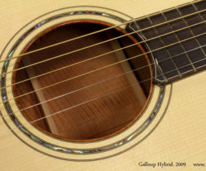 2009 Galloup Hybrid Acoustic (consignment)
