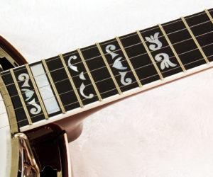 GoldStar GF 100 FE Banjo SOLD