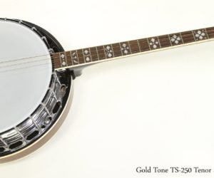 ❌SOLD❌  Gold Tone TS-250 Tenor Special Banjo