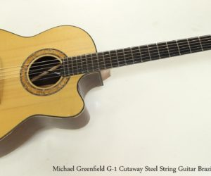 SOLD!!! Michael Greenfield G-1 Cutaway Steel String Guitar Brazilian, 2002