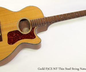 Guild F5CE-NT Thin Steel String Natural Top, 1996