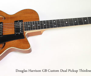 2015 Douglas Harrison GB Custom Dual Pickup Thinline Archtop