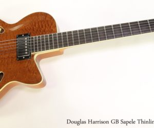 ❌SOLD❌ Douglas Harrison GB Sapele Thinline Archtop, 2013