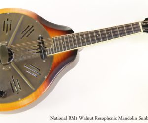 National RM1 Walnut Resophonic Mandolin Sunburst, 2010