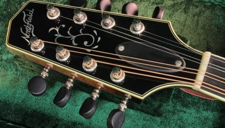 Northfield-A-Style-A5M-Big-Mon-mandolin-head-front