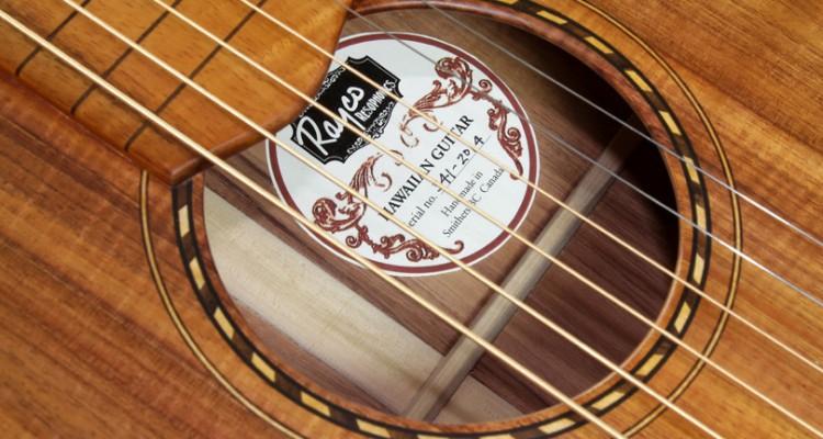 Rayco-Hawaiian-Weissenborn-Style-Guitar-2014-label