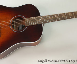 Seagull Maritime SWS GT Q1 Acoustic