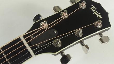 Taylor-514ce-FLTD-Fall-Limited-head-front