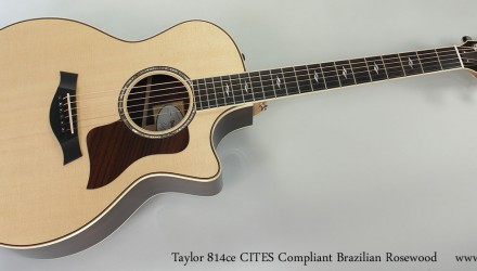 taylor-814ce-braz-cites-full-front