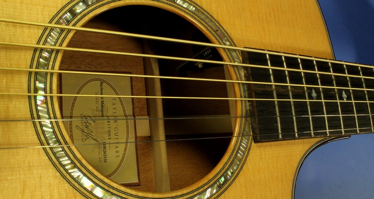taylor-baritone-6-mahogany-ss-label-1
