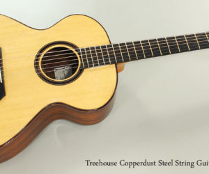 NO LONGER AVAILABLE!!! 2016 Treehouse Copperdust Steel String Guitar