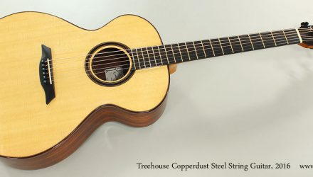 Treehouse-Copperdust-Steel-String-Guitar-2016-Full-Front-VIew