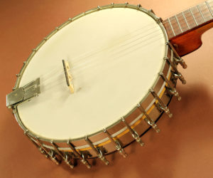 Vega Whyte Laydie Long-Neck Banjo  REDUCED