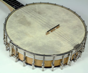 Vega Imperial Electric - Replica Neck Banjo (consignment) No Longer Available