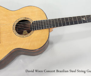 SOLD!  2010 David Wren Concert Brazilian Steel String Guitar